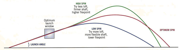 Effects of Spin